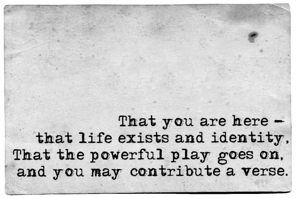 and you may contribute a verse.